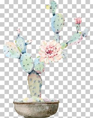 Watercolour Flowers Watercolor Painting Cactaceae Drawing PNG