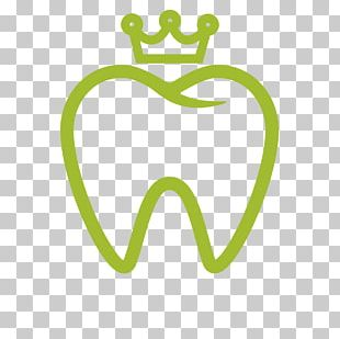Dentistry Tooth Whitening Human Tooth PNG
