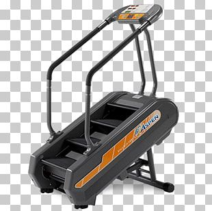 Stair Climbing Aerobic Exercise Stairs Indoor Rower PNG