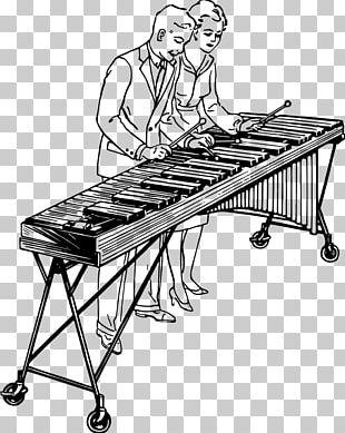 Marimba Drawing Musical Instruments Xylophone PNG