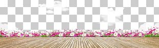 Floral Design Petal PNG