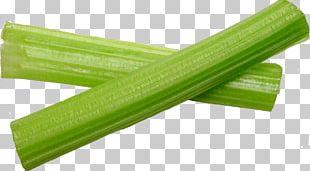Wild Celery Vegetable Plant Stem Ingredient Root PNG