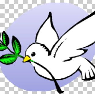 International Day Of Peace Columbidae World Day Of Peace Nova Scotia Voice Of Women PNG