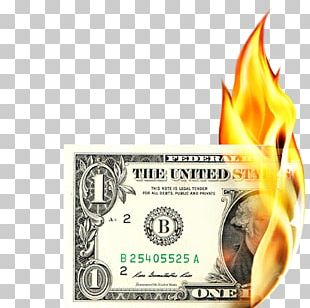 United States One-dollar Bill United States Dollar Banknote United States One Hundred-dollar Bill PNG