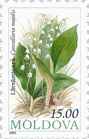Moldova Postage Stamps Mail Rubber Stamp Stamp Collecting PNG
