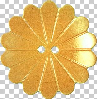 Petal Flower Gold Pink Button PNG