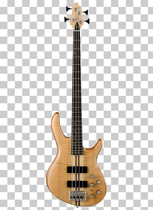 Bass Guitar Cort Guitars Double Bass PNG
