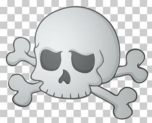 Calavera Skull Halloween Skeleton PNG