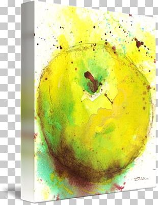 Still Life Photography Watercolor Painting Acrylic Paint PNG