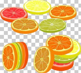 Lemon Grapefruit Rangpur Orangelo Lime PNG
