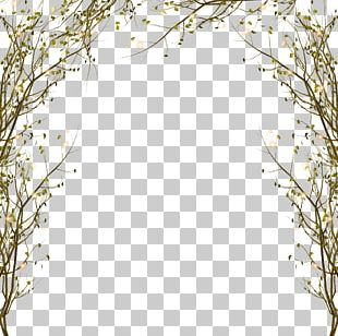 Tree Branch PNG