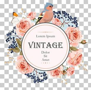 The Little Book Of Vintage Colouring Floral Design Flower Wreath PNG