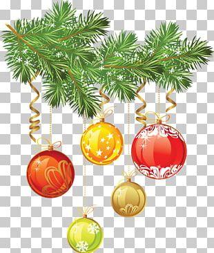 Christmas Bryansk Regional Football Federation Santa Claus Photography PNG