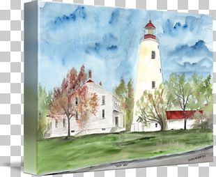 Watercolor Painting Photography Illustration PNG