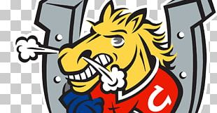 Barrie Colts Barrie Molson Centre Ontario Hockey League Niagara IceDogs Mississauga Steelheads PNG
