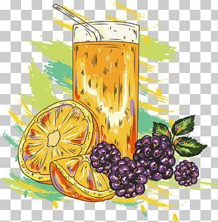 Orange Juice Smoothie Cocktail Fruit PNG