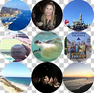 Carmel-by-the-Sea Big Sur Morro Bay California State Route 1 Vacation PNG
