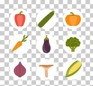 Maize Euclidean Corncob Icon PNG