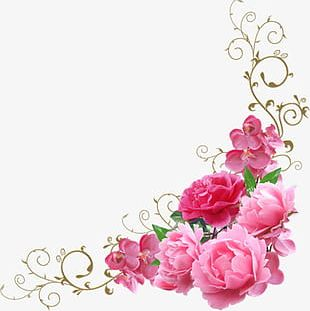 Pink Flowers Decorate The Corners PNG