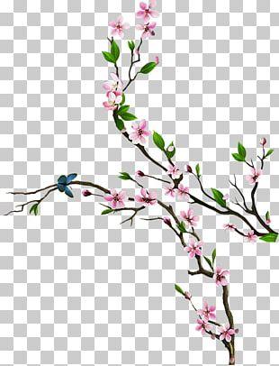 Floral Design Blossom Cut Flowers ST.AU.150 MIN.V.UNC.NR AD PNG
