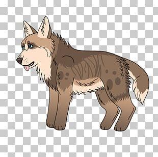 Dog Red Fox Coyote Jackal Fur PNG