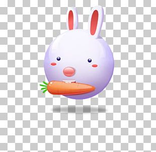 White Rabbit Easter Bunny Icon PNG