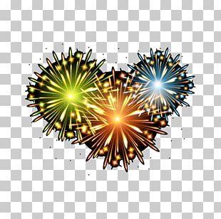 Love Fireworks PNG