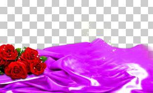 Garden Roses Beach Rose Flower Red PNG