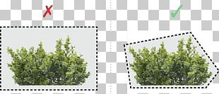OpenGL ES 3.0 Programming Guide Rendering OpenGL Shading Language PNG