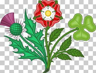 England Tudor Rose House Of Tudor House Of Lancaster PNG