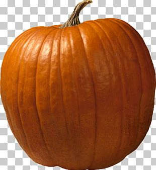 Los Angeles Dodgers Cucurbita Maxima Jack-o'-lantern Pumpkin Carving PNG
