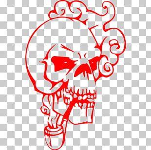 Bone Human Skull Symbolism Human Skeleton PNG