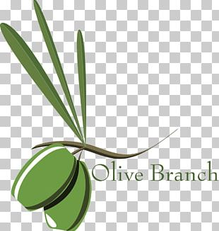 Olive Branch Petition Tapas Stock Photography PNG
