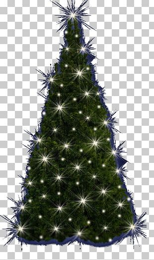 Christmas Tree Spruce Christmas Ornament Fir Pine PNG