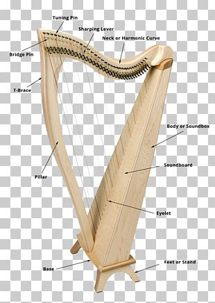 Pedal Harp String Instruments Musical Instruments PNG