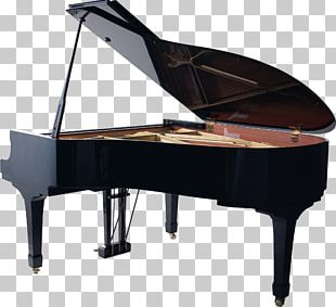Piano Musical Instruments Art PNG