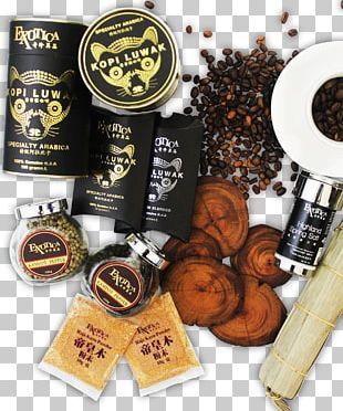 Bario Porcupine Dates Kopi Luwak Coffee Asian Secrets Sdn. Bhd. PNG