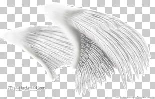 Black And White Angel Wing Monochrome Drawing PNG