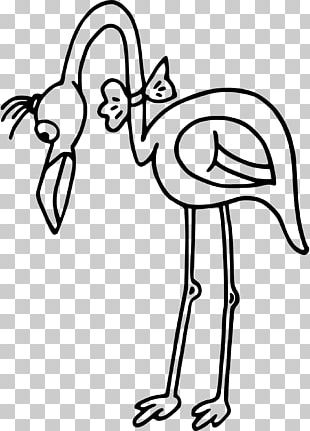 Coloring Book Flamingo Adult Page PNG