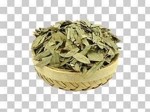 Herbal Tea Senna Glycoside Laxative Crude Drug PNG