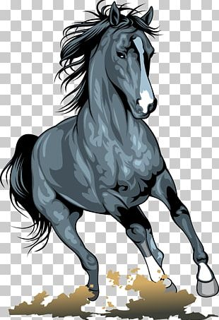 Horse Pony PNG