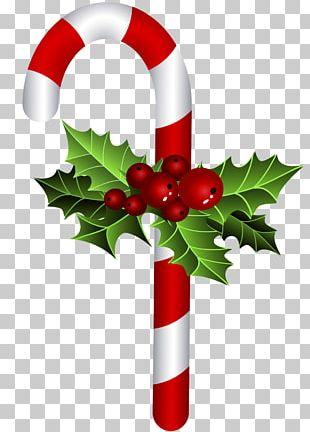 Christmas Ornament Candy Cane Bastone Christmas Tree PNG