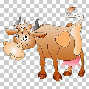 Taurine Cattle Holstein Friesian Cattle Water Buffalo Livestock PNG
