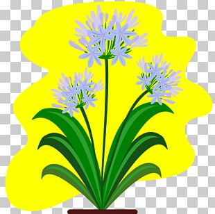 Cut Flowers Lily Of The Nile Plant PNG