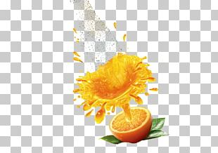 Orange Juice Tomato Juice Juicer Drink PNG