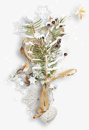 Snowflake Christmas Tree Branches Biscuits PNG