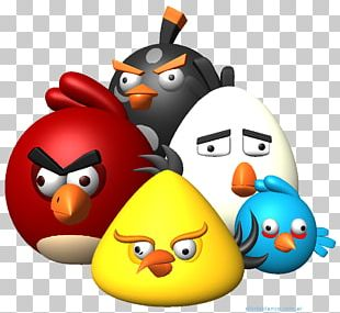 Angry Birds POP! Bad Piggies Desktop High-definition Video PNG
