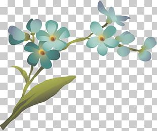 2016 Nissan LEAF Flower Petal Plant Stem July PNG