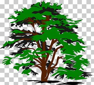 Tree Black And White PNG