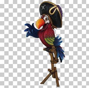 Seabird Parrot Gulls Comics PNG